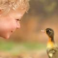 【可愛過ぎる♡動物たちとなかよし画像】少年バディとレーガン♡ひたすら可愛い画像を眺めるシリーズ④