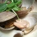 絶滅の危機から復活した日本の伝統食材江戸前ハマグリ