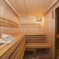 風呂好き日本で流行るサウナの数々