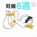 【妊娠6週~妊娠2カ月~】赤ちゃん、ママの様子☆