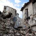 地震を予知しているという動物の特殊能力は本当なのか?