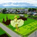 【画像あり】田舎館村(いなかだてむら)の田んぼアートが話題!