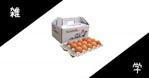 【雑学】卵の殻の色は、品種で決まる