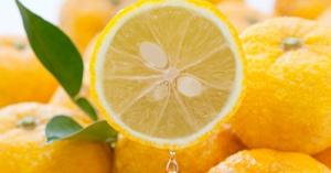 クックパッド「つくれぽ100-1000超!」人気♡【柚子こしょう】アレンジ・レシピ【20選】☆