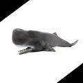 【雑学】海から打ち上げられたクジラは自重で死んでしまう