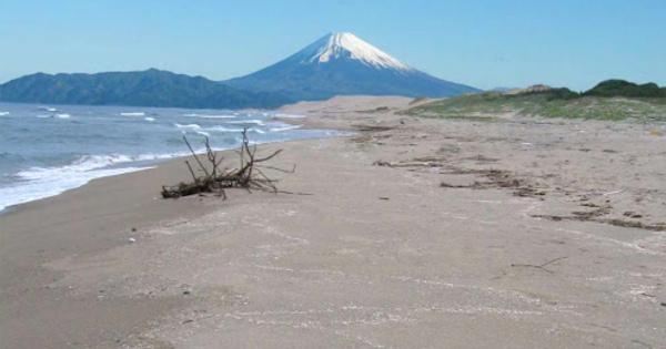 【速報】静岡県の新型コロナウイルス感染者|新たに島田市でも感染確認100人超