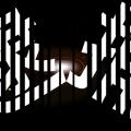 10代の女性と性交した?79歳の千葉淳容疑者を逮捕!
