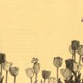 <Floret>3月の花・チューリップ・キューケンホフ・椿ツバキ