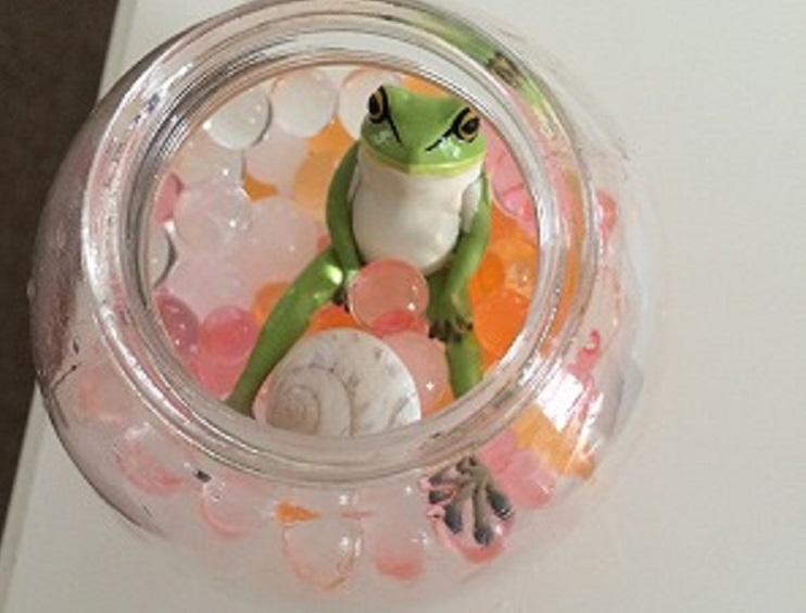 カエル(のおもちゃ)の瓶詰飾りを作ってみた!