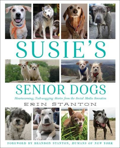 Susies Senior Dogs