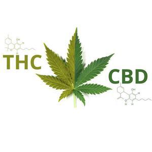 <center>麻の代表的な成分THCとCBD。</center>