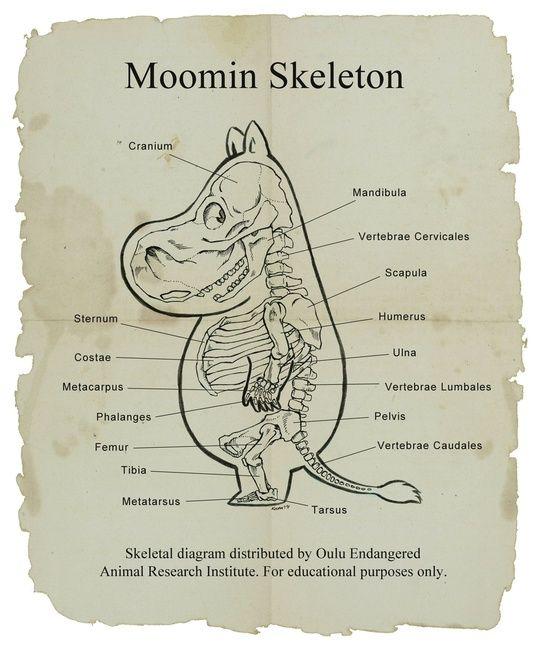 Moomin Skeleton あはははは。