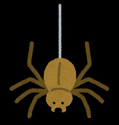 蜘蛛には刺激が強すぎる?