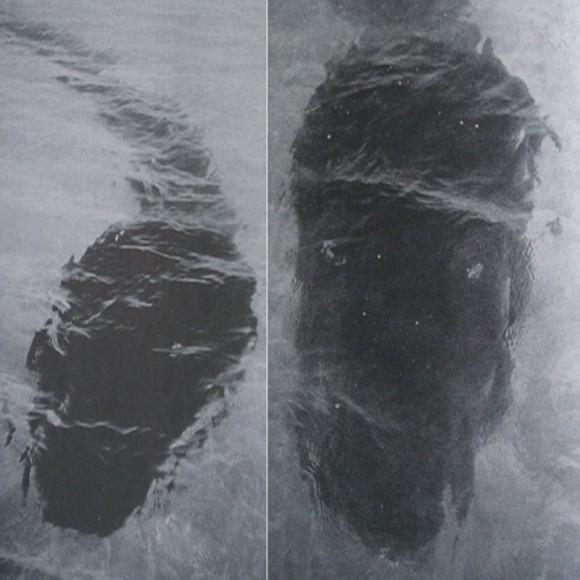 フック島の海の怪物