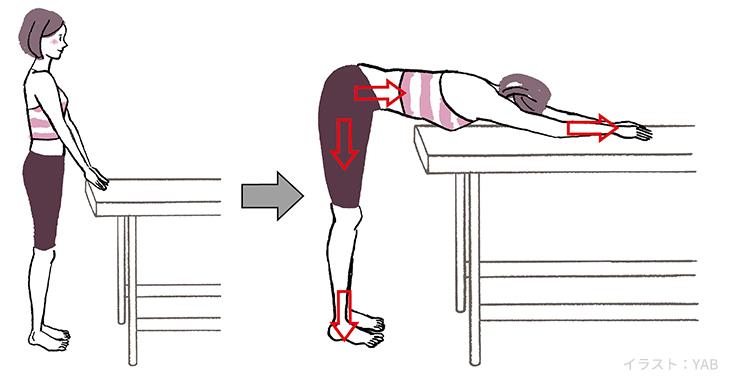 全身のセルフ筋膜リリース縦方向:筒状に伸ばすL字型筋膜リリース