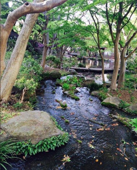 豊島園 庭の湯 庭園