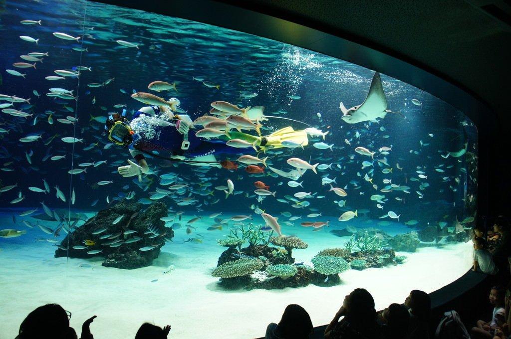 サンシャイン水族館(東京都)