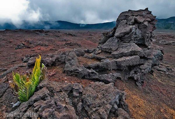 レユニオン島の尖峰群、圏谷群および絶壁群の絶景写真画像