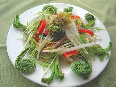 山菜サラダ