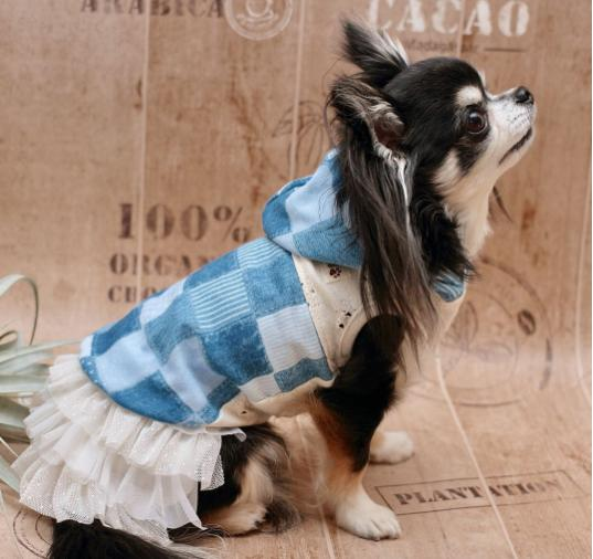 犬服通販サイト「DogGoods&Wear M&R」