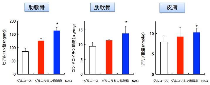NAGの摂取により、軟骨や皮膚中で機能を発揮する生体成分が増加します。