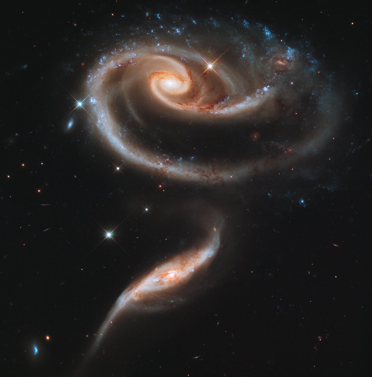 a rose of galaxies