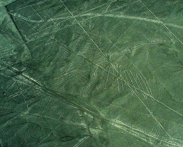 ナスカの地上絵 コンドル  ナスカの地上絵 宇宙飛行士 ナスカの地上絵 クジラ ナスカの地上絵